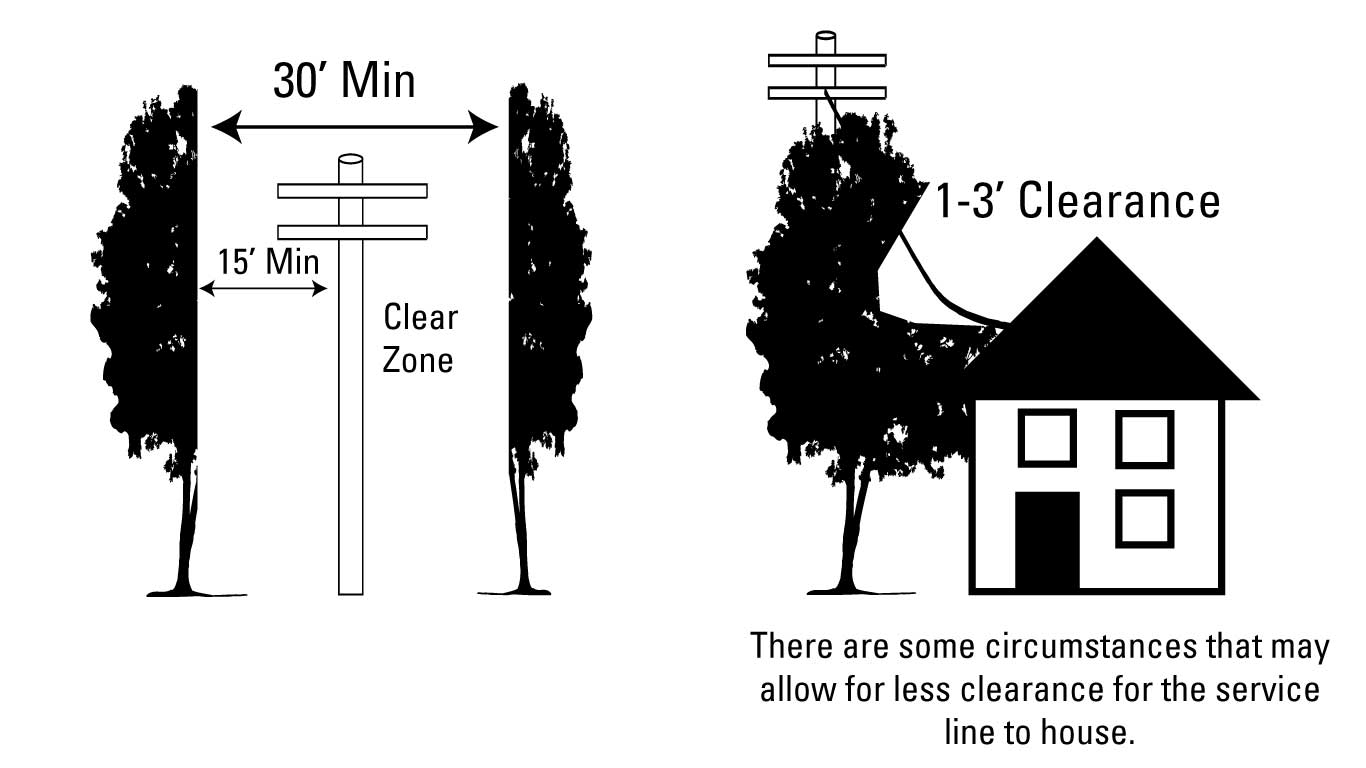 Tree clearance guidelines