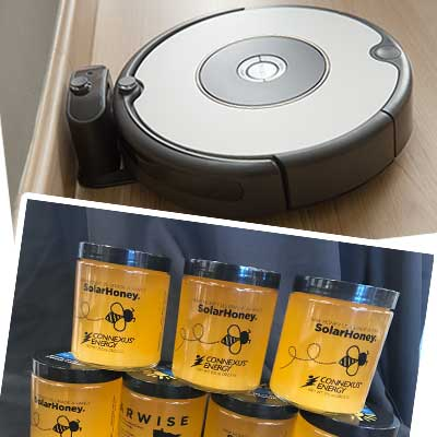 Roomba & SolarWise Honey